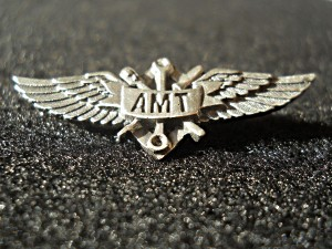AMT wings(4)